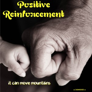 Positive-Reinforcement-300x300.png