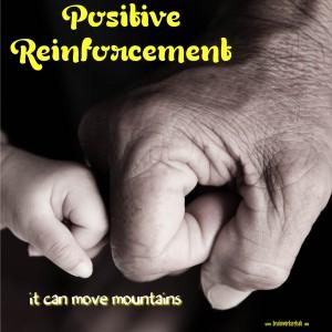 Positive-Reinforcement-300x300.png